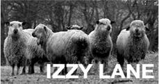 Izzy Lane Clothing